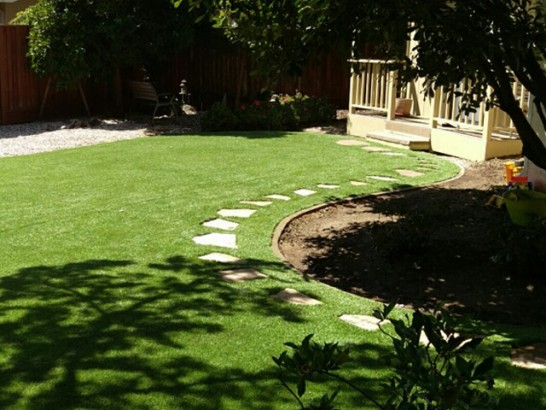 Artificial Grass Photos: Artificial Grass Carpet Belmont, Ohio Rooftop, Backyard Landscaping