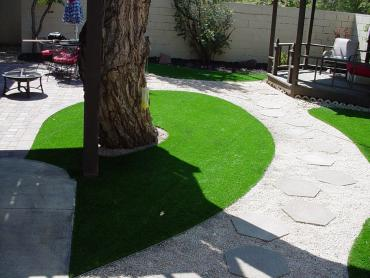 Artificial Grass Photos: Artificial Grass Carpet Delphos, Ohio Gardeners, Backyard Landscaping