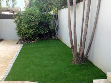 Artificial Grass Photos: Artificial Grass Carpet Dennison, Ohio City Landscape, Backyard Landscape Ideas