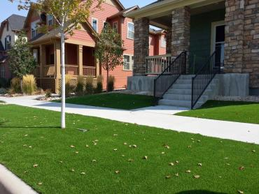 Artificial Grass Dublin, Ohio Paver Patio, Front Yard Ideas artificial grass
