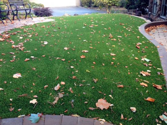 Artificial Grass Photos: Artificial Grass Installation Arlington, Ohio Design Ideas, Front Yard Landscape Ideas