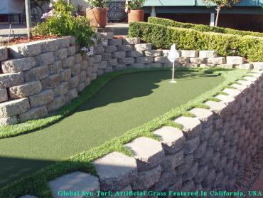 Artificial Grass Photos: Artificial Grass Installation Dayton, Ohio Indoor Putting Greens, Backyard Makeover