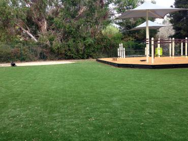 Artificial Grass Photos: Artificial Grass Installation Mogadore, Ohio Playground Turf