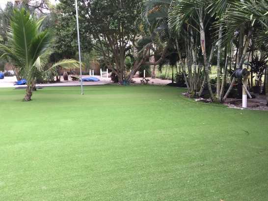 Artificial Grass Photos: Artificial Grass Lyons, Ohio Backyard Playground, Commercial Landscape