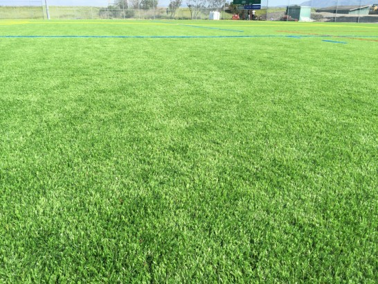 Artificial Grass Photos: Artificial Grass Shawnee Hills, Ohio Lawn And Garden
