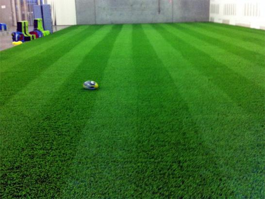 Artificial Grass Photos: Artificial Lawn Clarktown, Ohio Eco Friendly Products