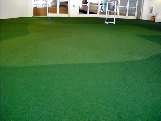 Artificial Grass Photos: Artificial Lawn Dunlap, Ohio Backyard Putting Green, Commercial Landscape