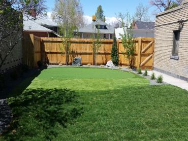 Artificial Grass Photos: Artificial Lawn New Philadelphia, Ohio Landscape Ideas, Backyard Landscape Ideas