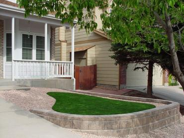 Artificial Grass Photos: Artificial Turf Canal Winchester, Ohio, Front Yard Design