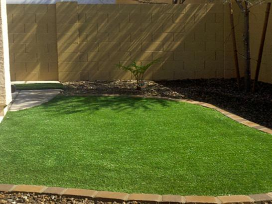 Artificial Grass Photos: Artificial Turf Cost Ansonia, Ohio Roof Top, Backyard Landscape Ideas