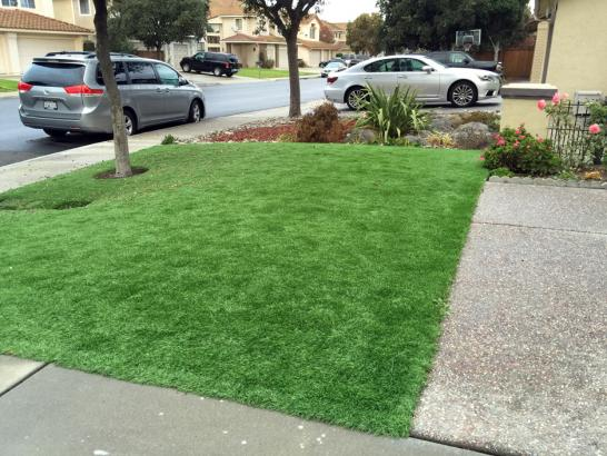 Artificial Grass Photos: Artificial Turf Cost Chauncey, Ohio Landscaping, Landscaping Ideas For Front Yard