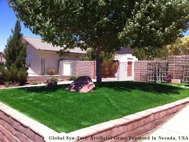 Artificial Turf Cost Lakewood, Ohio Design Ideas, Front Yard Design artificial grass