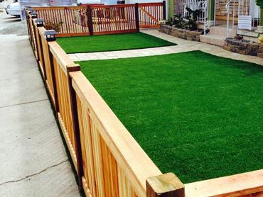 Artificial Grass Photos: Artificial Turf Cost Mariemont, Ohio Landscaping Business, Small Front Yard Landscaping