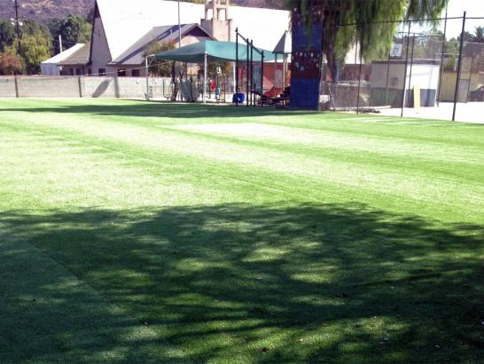 Artificial Grass Photos: Artificial Turf Cost McArthur, Ohio Roof Top, Recreational Areas