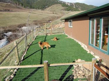 Artificial Grass Photos: Artificial Turf Cost Sidney, Ohio Dog Pound, Backyard Landscaping