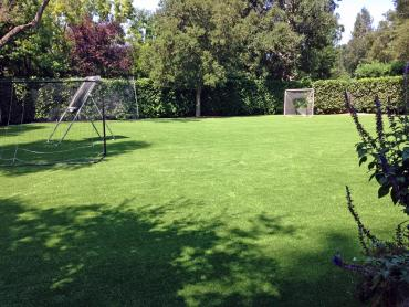 Artificial Grass Photos: Artificial Turf Cost Willoughby Hills, Ohio Roof Top, Backyard Garden Ideas