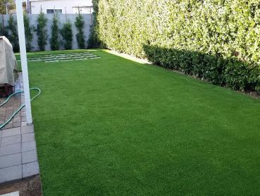 Artificial Grass Photos: Artificial Turf Installation Sixteen Mile Stand, Ohio Pet Turf, Small Backyard Ideas