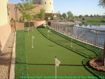 Artificial Turf Installation Toledo, Ohio Backyard Deck Ideas, Backyard Landscaping Ideas artificial grass