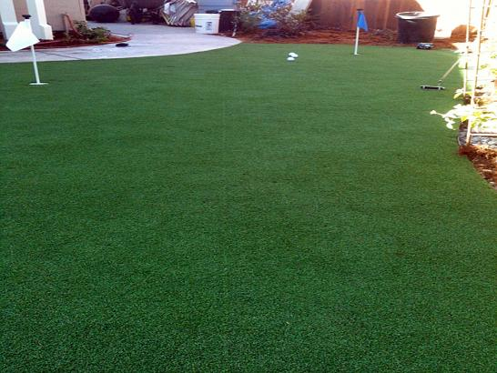 Artificial Grass Photos: Artificial Turf Loveland Park, Ohio Backyard Playground, Backyard Landscaping