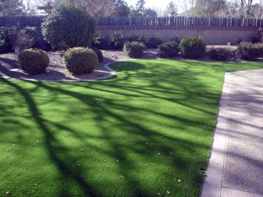 Artificial Grass Photos: Artificial Turf Wauseon, Ohio Lawns, Small Front Yard Landscaping