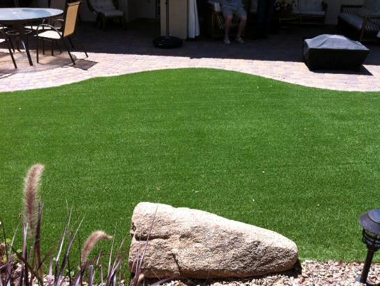Artificial Grass Photos: Best Artificial Grass Arcanum, Ohio Dog Pound, Backyard Landscaping Ideas