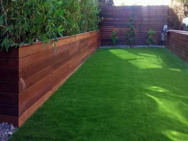Artificial Grass Photos: Best Artificial Grass Champion Heights, Ohio Garden Ideas, Backyard Landscape Ideas