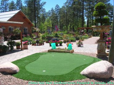 Artificial Grass Photos: Best Artificial Grass Cleveland, Ohio Putting Green Carpet, Backyards