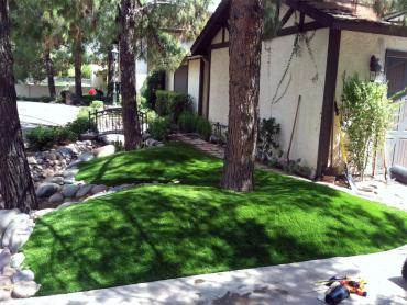 Artificial Grass Photos: Fake Grass Ashland, Ohio, Front Yard Ideas