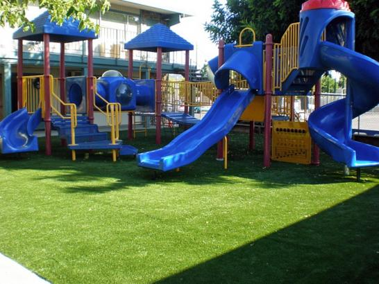 Artificial Grass Photos: Fake Grass Carpet Farmersville, Ohio Landscape Ideas, Commercial Landscape