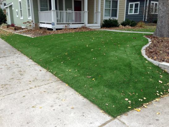 Artificial Grass Photos: Fake Grass Carpet Leetonia, Ohio Landscape Rock, Front Yard Ideas