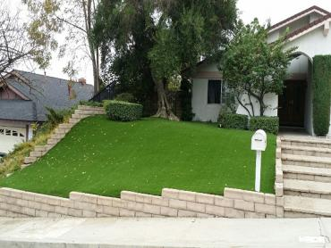Artificial Grass Photos: Fake Grass Carpet The Plains, Ohio Gardeners, Small Front Yard Landscaping