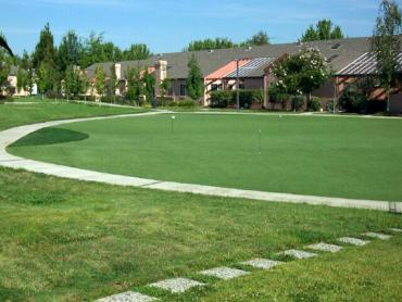 Artificial Grass Photos: Fake Grass Mingo Junction, Ohio Putting Greens, Commercial Landscape