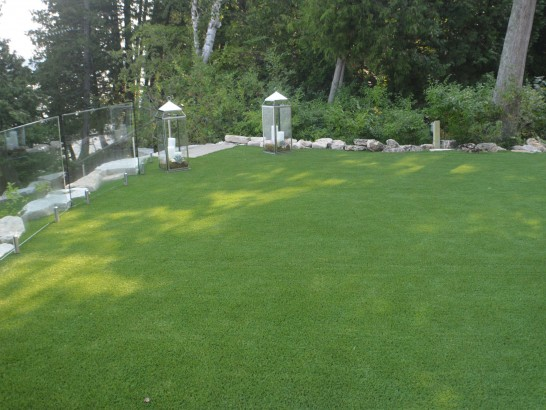Fake Lawn Austinburg, Ohio Landscaping, Small Backyard Ideas artificial grass