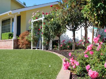 Artificial Grass Photos: Fake Lawn Dry Ridge, Ohio Rooftop, Front Yard Design