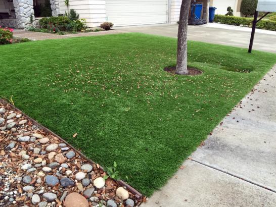 Artificial Grass Photos: Fake Lawn Luckey, Ohio Lawn And Landscape, Front Yard Landscaping
