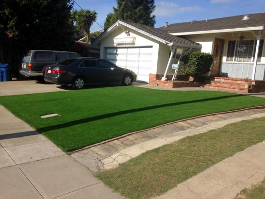 Artificial Grass Photos: Fake Turf Lagrange, Ohio Landscaping Business, Front Yard