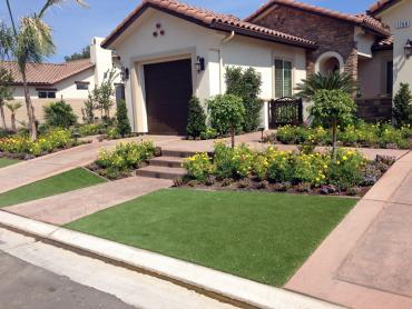 Artificial Grass Photos: Fake Turf New Boston, Ohio Landscape Photos, Front Yard Landscape Ideas