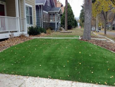 Artificial Grass Photos: Grass Carpet Cheviot, Ohio Roof Top, Front Yard Landscape Ideas