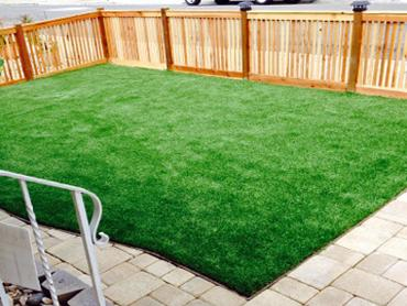 Artificial Grass Photos: Grass Carpet Fort Shawnee, Ohio Paver Patio, Backyard Design