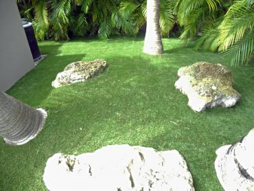 Artificial Grass Photos: Grass Carpet North Olmsted, Ohio Landscape Rock, Backyard Designs