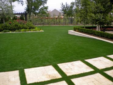 Artificial Grass Photos: Grass Carpet North Ridgeville, Ohio Backyard Playground, Backyards