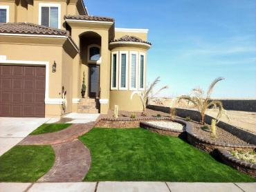 Artificial Grass Photos: Grass Carpet Wooster, Ohio Landscape Photos, Small Front Yard Landscaping