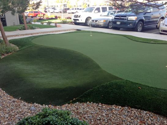 Artificial Grass Photos: Grass Carpet Wright-Patterson AFB, Ohio Indoor Putting Greens, Commercial Landscape
