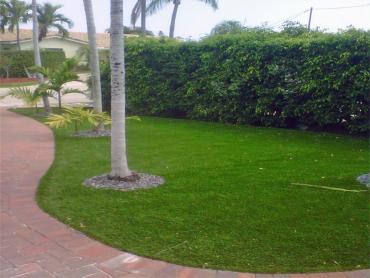 Artificial Grass Photos: Grass Installation Hubbard, Ohio Garden Ideas, Front Yard Landscape Ideas