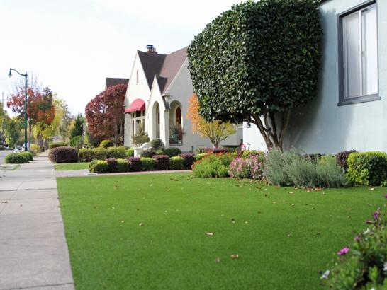 Artificial Grass Photos: Grass Turf Millersport, Ohio Home And Garden, Front Yard Ideas