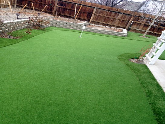 Artificial Grass Photos: Grass Turf Owensville, Ohio Home And Garden, Backyard