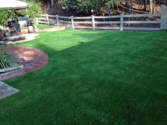 Artificial Grass Photos: Green Lawn Eaton Estates, Ohio Design Ideas, Backyard Landscaping Ideas