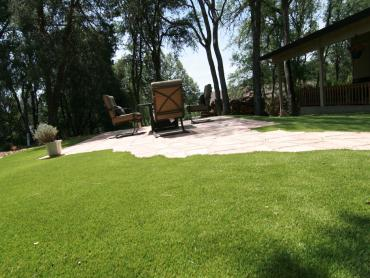 Artificial Grass Photos: Green Lawn Lincoln Village, Ohio Landscape Design, Small Backyard Ideas