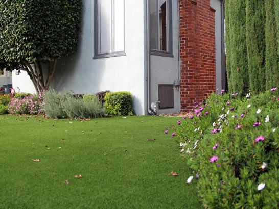 Artificial Grass Photos: Green Lawn Metamora, Ohio Landscape Ideas, Front Yard