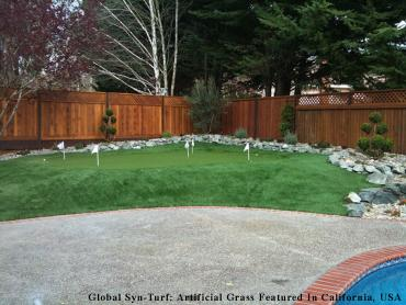 Artificial Grass Photos: Lawn Services Elyria, Ohio Home And Garden, Backyard Landscaping
